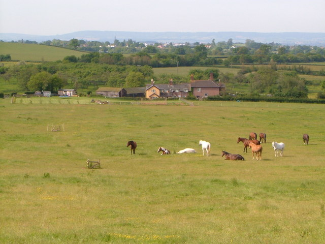 The Farm, Whimple