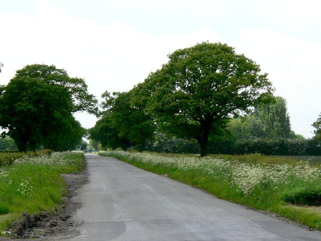 Country Road from the Great West Wood