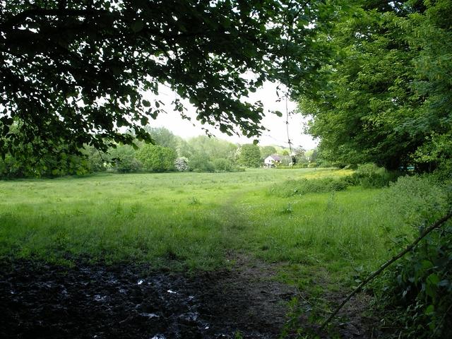 Footpath across field, King's Somborne