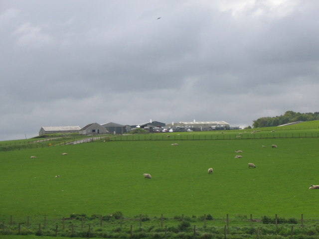 Cattle Market, Whitefordhill