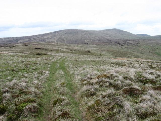 Eastern plateau of Blairdenon Hill