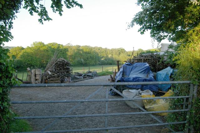 Wood piles at Luckett