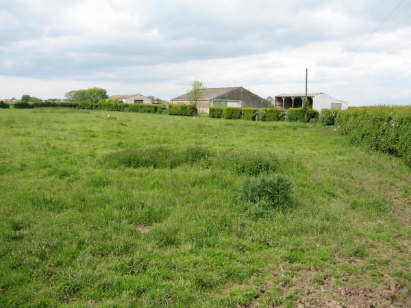 Rufforth Approach Farm