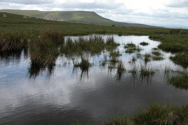 Pool on Cefn Hill