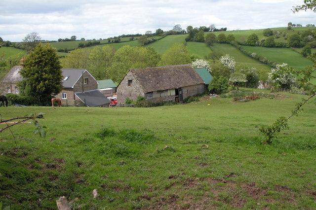 Farm at Mynydd Brith