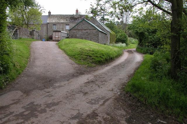 Mynydd Brith