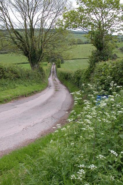 Lane to Little Mountain
