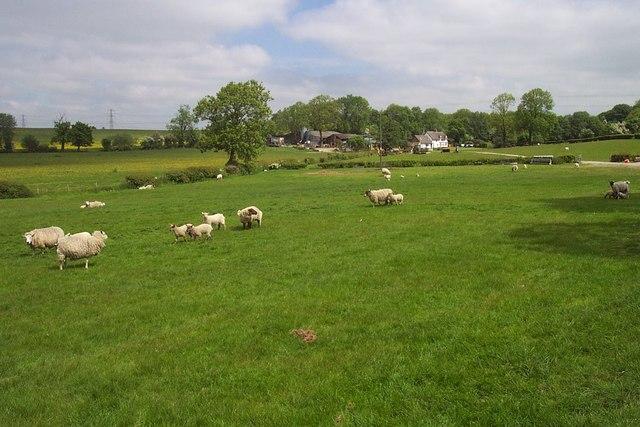 Parkside Farm