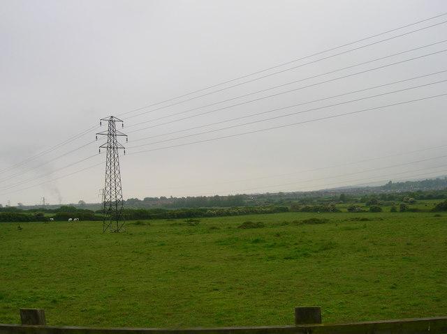 Northern edge of Willingdon Level