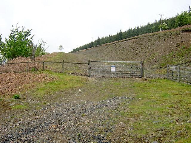 Forest Track Near Leadhills Road