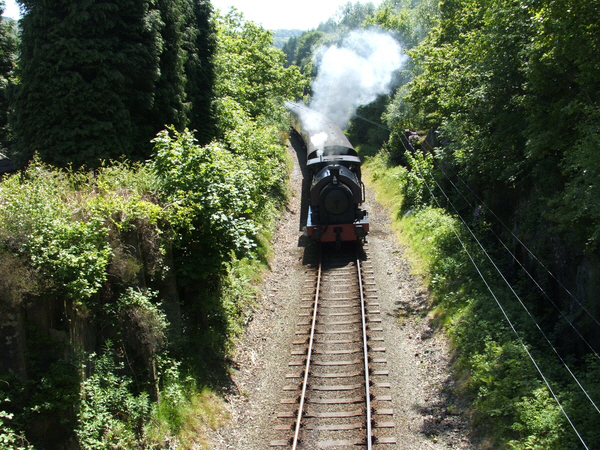 Haverthwaite Railway at Linsty Green