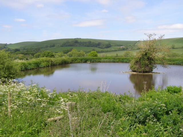 Pond northwest of Lower Kingston Russell Farm