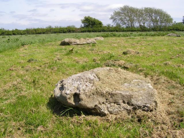 Recumbent stones at Kingston Russell stone circle