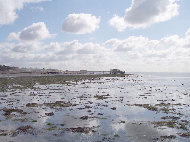 Flinty Shoreline, Worthing