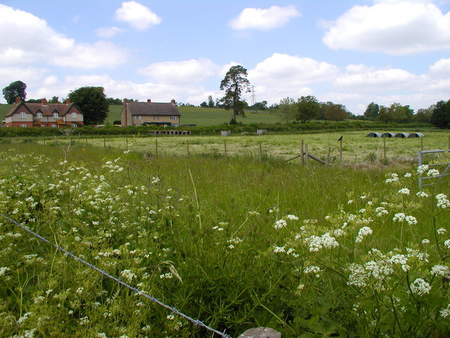 Country houses and pig huts, near Bossington