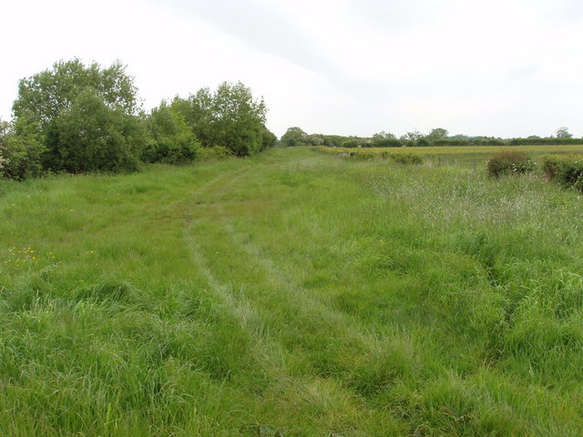 Roman Road on Otmoor