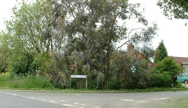 Popple Drove, Leverington Common