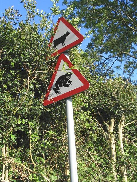 Warning road signs near Rhyd-y-Pandy