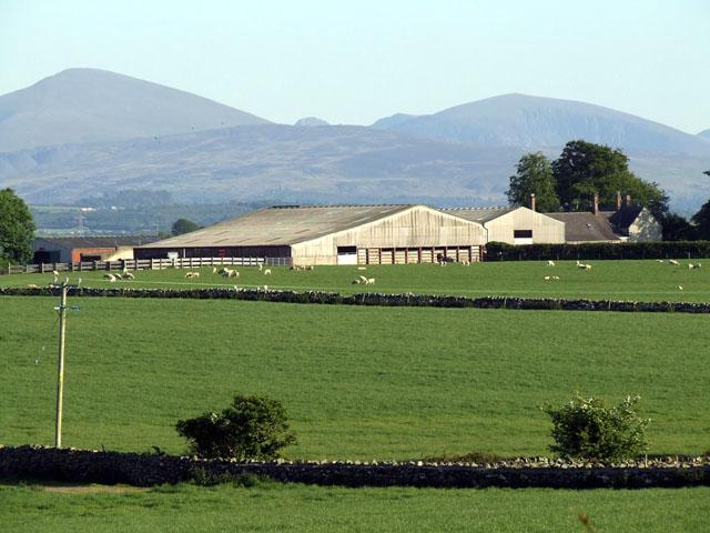 Castellior Farm and fields