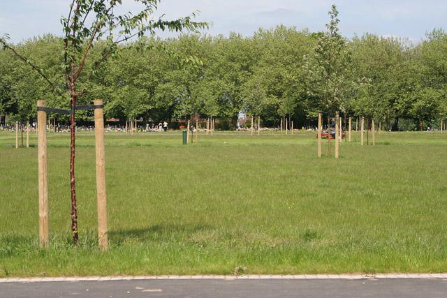 Recreation Land off Dorset Avenue