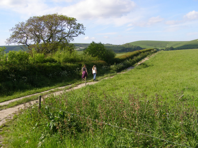 Footpath to Lower Farm, Long Bredy