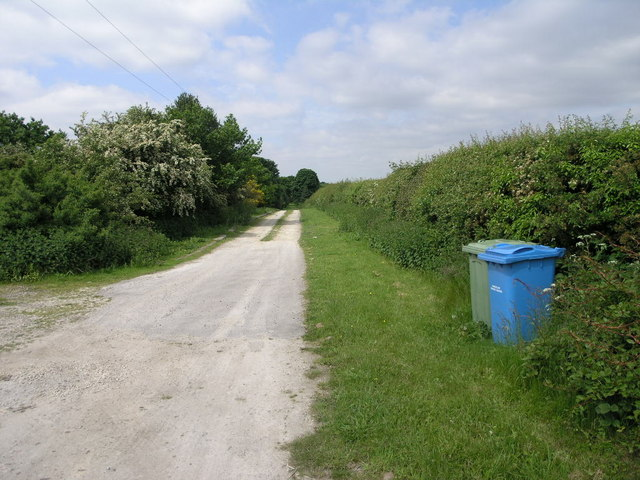 Two Bins and Bridleway