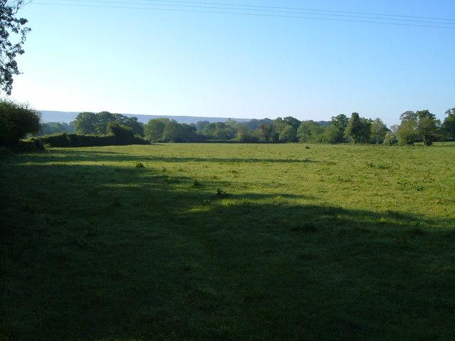 Meadow by River Tale