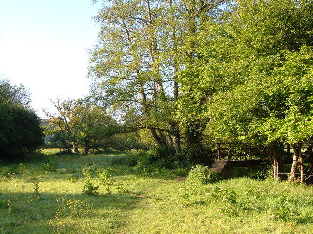 Footpath at River Tale