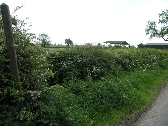 Footpath to Moorgate