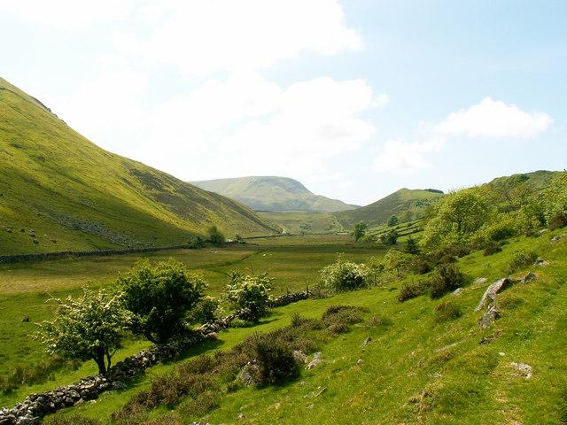 Farmland at Nant-y-gwyrddail
