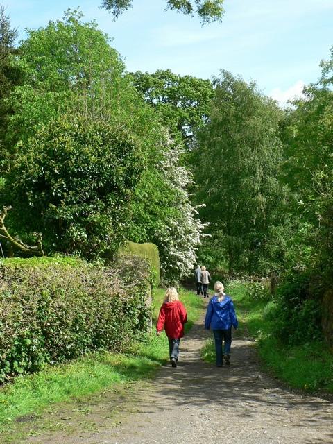 Footpath by Lindley Lodge