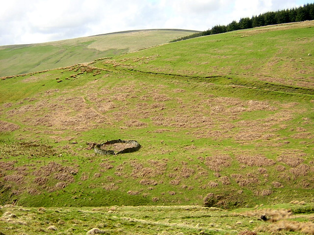 Sheepfold on Hillside
