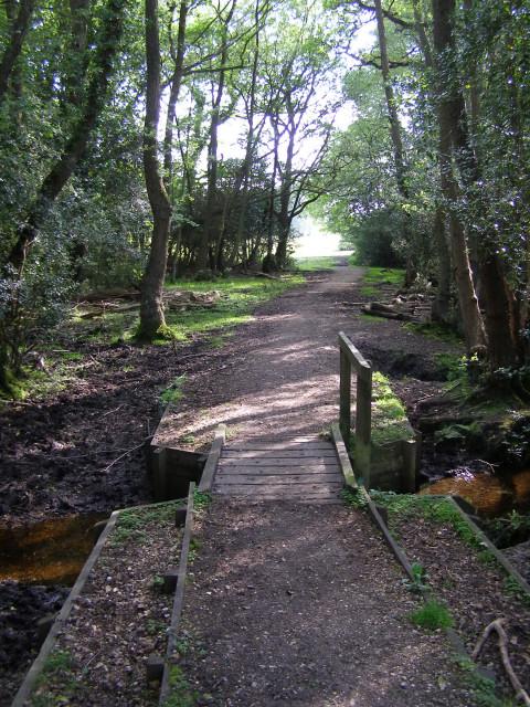 Footbridge across the Beaulieu River, New Forest