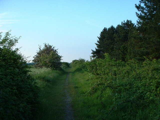 Disused railway line, looking north.