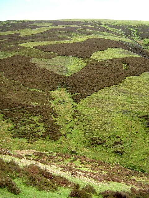 Mottled Hillside Below East Mount Lowther