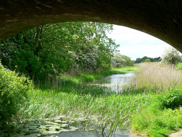 Pocklington Canal from beneath Walbut Road Bridge