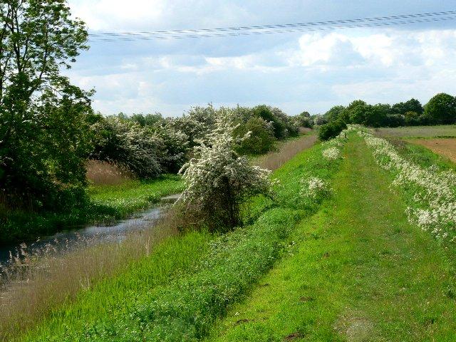 Pocklington Canal Tow Path at Walbut Bridge