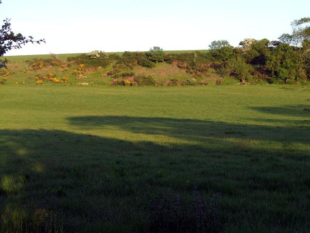 Field opposite Dyffryn