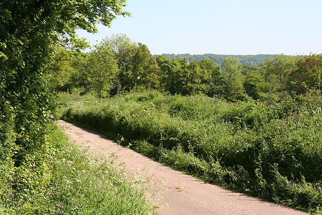 Upottery: near the entrance to Fair Oak