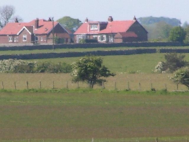 Rural housing across a field, in a heat haze!