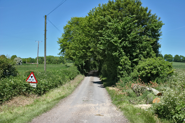 Country lane east of West Meon