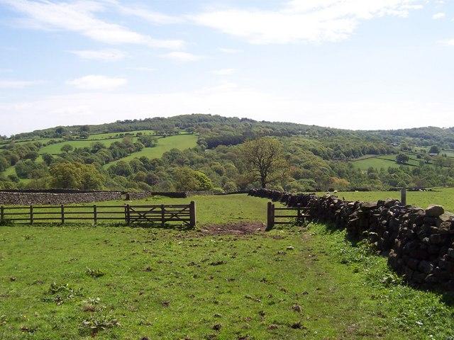 Fields running down to Fell Beck