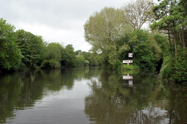 River Avon above Weston Cut, Locksbridge, Bath
