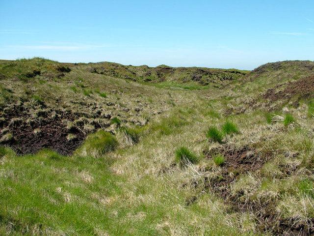 Shining Clough Moss