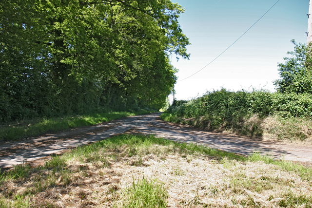Road leading to Old Down Farm
