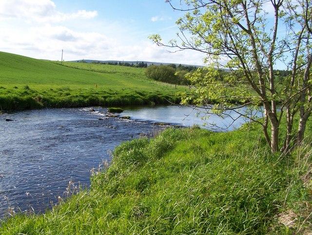 Allan Water in Kinbuck