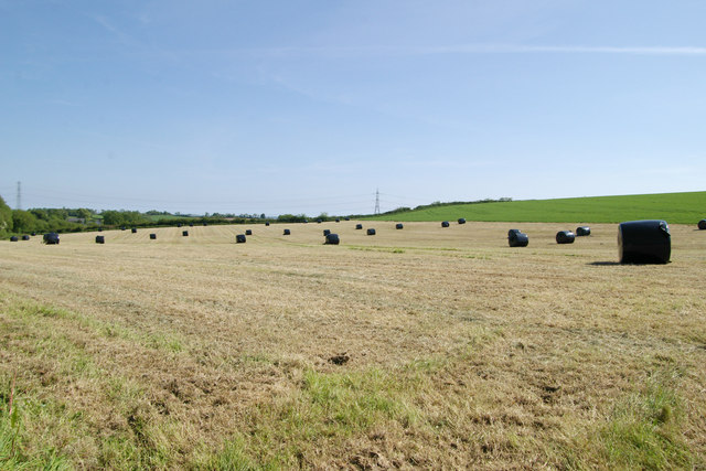 New crop of black bales, Trevashmond
