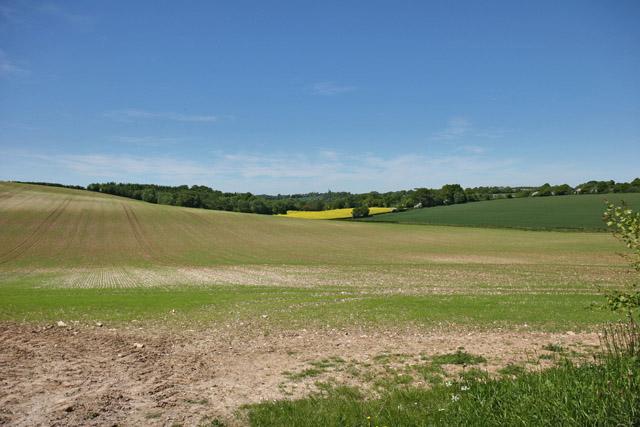 Farmland west of Lower Bordean