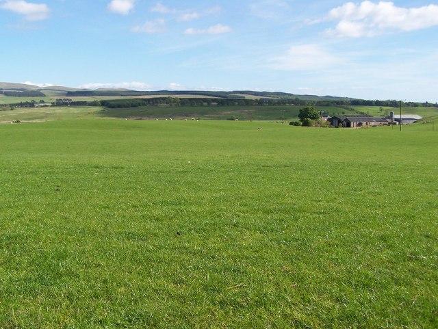 reccodebtdriv: grassy field