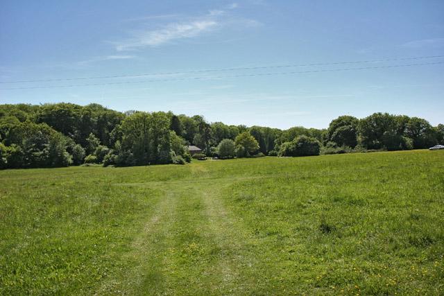 Field near Bramdean Common